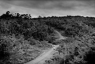 """This solitary earth thread through Borneo rainforest is the sole connection of Long Lellang to the outside world, which means this road leads to the coast.  A recent landslip has reduced one steep part of this road to the width of one of these inbound 4WD Toyotas which carry dry goods, school supplies, medical supplies and other things too heavy for the twice weekly propellor plane which flies in from the coastal city of Miri.  This road was part of a kind of """"deal with the devil"""" the Kelabit community of Long Lellang made with Shin Yang Group logging company to permit the logging conglomerate to ravage the Borneo rainforest bordering the road up into the adjacent mountains.  Without the logging, there would be no road, no rudimentary road maintainance.  Now there may be not maintainance anyhow, deal or no.  Between Long Lellang and Long Kelamu, Sarawak, Malaysia.   Between Long Lellang and Long Kelamu."""