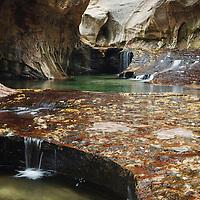The Subway<br /> Zion National Park, Utah, USA