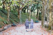 SANTIAGO DE COMPOSTELA - 14th of October - Two nuns walk through Alameda park, Santiago de Compostela, Galicia, Northern Spain.