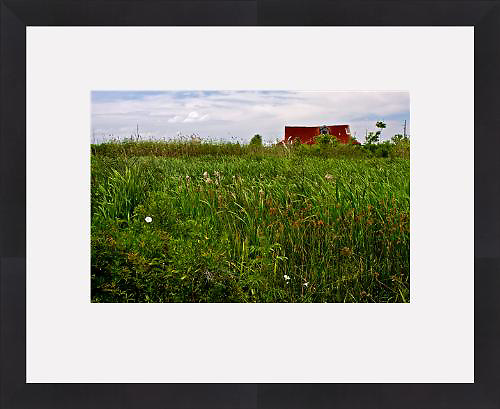 Pilottown, Louisiana (Framed Fine Art Print)