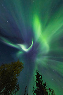 Aurora Borealis in Chena Lakes State Recreation Area, North Pole, Alaska