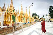 Elderly monk walking at shwedagon pagoda