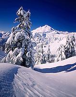 Mount Baker from Kulshan Ridge in winter, Heather Meadows Recreation Area Washington