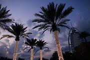 United Arab Emirates: Dubai.The Burj al Arab 7 star Hotel and palm trees, Jumeirah district