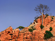 An intimate view at sunset of the red rocky walls of the Calanches, nearby Piana in Corsica, France.