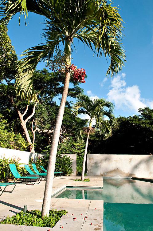 Hicks Island House, Viecques, Puerto Rico