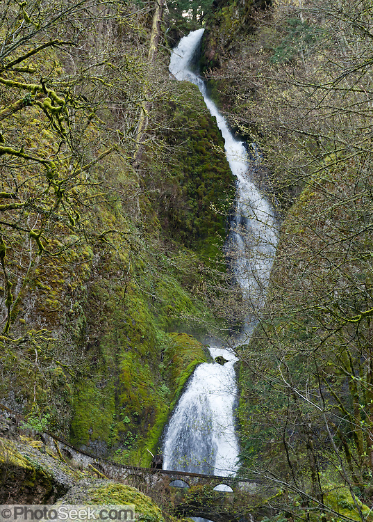 "Wahkeena Falls (242 foot total plunge) in Columbia River Gorge National Scenic Area, Oregon, USA. Formerly known as Gordon Falls, a 1915 committee of the Mazamas changed the name to Wahkeena, the Yakima Indian word for ""most beautiful."""