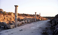 Libia  Sabratha .Città  romana a circa 67km da Tripoli.<br /> Sabratha Libya.Roman city about 67km from Tripoli.