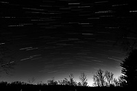 Winter Nighttime Sky Over New Jersey. Composite star trail image 01:30-01:59) taken with a Nikon D810a camera and 19 mm f/4 PC-E lens (ISO 400, 19 mm, f/8, 120 sec). Raw images processed with Capture One Pro and the composite created with Photoshop CC (statistics, maximum). Conversion to B&W with Capture One Pro.