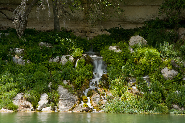 Stock photo of the head springs of the Llano River in the Texas Hill Country