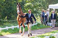 Chester Weber, (USA), Boris W, Boy W, Para, Splash, Uniek - Horse Inspection Driving - Alltech FEI World Equestrian Games&trade; 2014 - Normandy, France.<br /> &copy; Hippo Foto Team - Leanjo de Koster<br /> 25/06/14