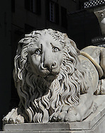 A lion statue  on the steps of the San Lorenzo Cathedral in Genoa, Italy, Photograph by Dennis Brack