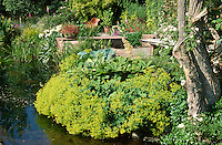 large pool with overhanging planting