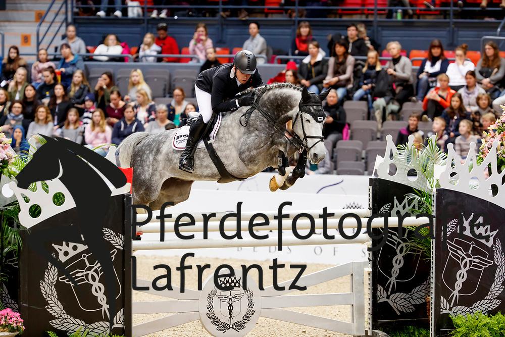 Brinkmann, Markus (GER) Kingston v. Akenhof<br /> Göteborg - Gothenburg Horse Show FEI World Cups 2017<br /> © Stefan Lafrentz