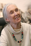 CAMBRIDGE, MA.Dr. Jane Goodall visits the Harvard Museum of Natural History to talk to students who are part of the Roots and Shoots program and to accept the Roger Tory Peterson medal which celebrates and perpetuates Roger Tory Peterson's tireless efforts to conserve the planet's biological diversity