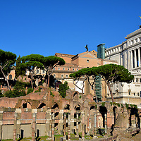 History of Forum of Caesar in Rome, Italy<br /> Julius Caesar was a member of the First Triumvirate (60 – 53 BC). This arrangement placed the power of the Roman Republic in the hands of three men. He later had a short reign as the sole dictator (49 to 44 BC). He used his wealth and influence to buy a large tract of land adjacent to the Roman Forum. The ensuing project became the first of the Imperial Forums built by various Roman leaders from 46 BC through 113 AD. Foro di Cesare measures 525 by 246 feet. You are looking at the southwest portico that encircled the forum's central courtyard. It once contained an equestrian sculpture of Caesar called Equus Caesaris. In the upper right corner is the Vittorio Emanuele II Monument, also called the Altar of the Fatherland.