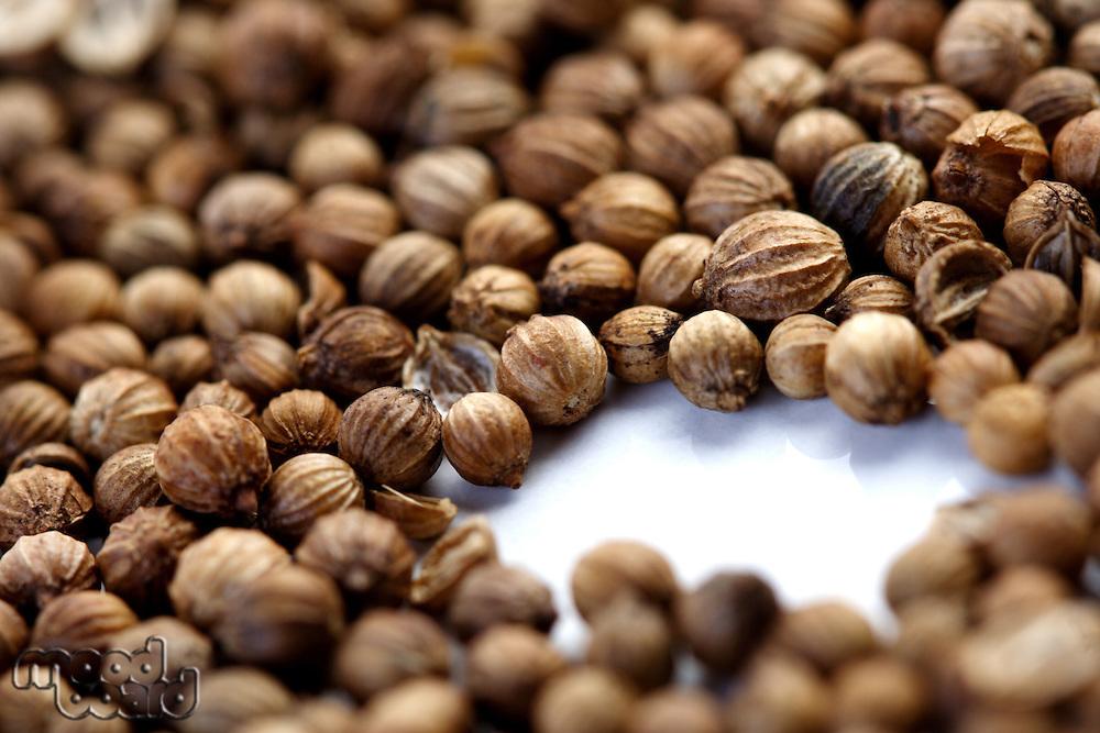 Closeup of died mustard seeds
