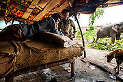 11th September 2014, Yamuna River, New Delhi, India. Elephant handlers wait-out a monsoon shower inside their lean-to shelter near the ITO bridge in New Delhi, India on the 11th September 2014<br /> <br /> Elephant handlers (Mahouts) eke out a living in makeshift camps on the banks of the Yamuna River in New Delhi. They survive on a small retainer paid by the elephant owners and by giving rides to passers by. The owners keep all the money from hiring the animals out for religious festivals, events and weddings, they also are involved in the illegal trade of captive elephants. The living conditions and treatment of elephants kept in cities in North India is extremely harsh, the handlers use the banned 'ankush' or bullhook to control the animals through daily beatings, the animals have no proper shelters are forced to walk on burning hot tarmac and stand for hours with their feet chained together. <br /> <br /> PHOTOGRAPH BY AND COPYRIGHT OF SIMON DE TREY-WHITE<br /> + 91 98103 99809<br /> email: simon@simondetreywhite.com photographer in delhi