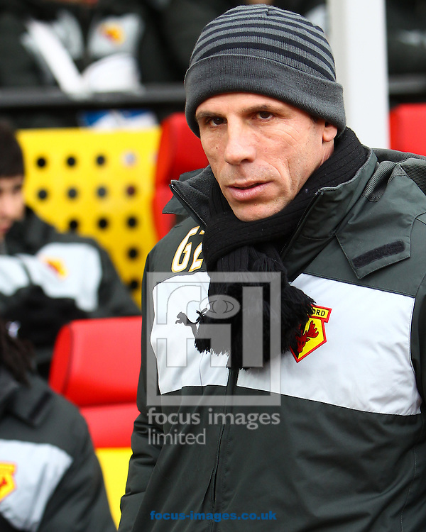 Picture by John  Rainford/Focus Images Ltd +44 7506 538356.23/02/2013.Gianfranco Zola, manager of Watford before the npower Championship match at Vicarage Road, Watford.
