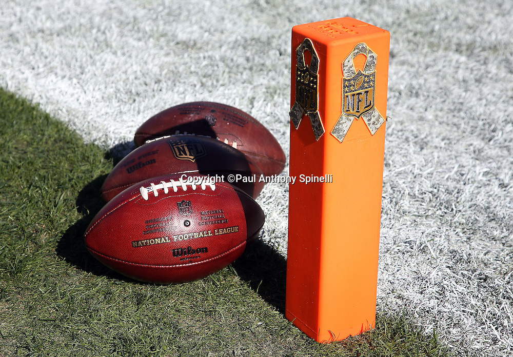 Three footballs lie near an end zone pylon decorated with a Salute To Service logo in honor of Military Appreciation week before the Philadelphia Eagles 2015 week 10 regular season NFL football game against the Miami Dolphins on Sunday, Nov. 15, 2015 in Philadelphia. The Dolphins won the game 20-19. (©Paul Anthony Spinelli)
