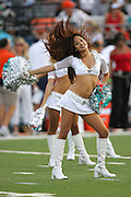 CANTON - AUGUST 8:  Miami Dolphins cheerleaders worked the sidelines in the first preseason game against the Chicago Bears at Pro Football Hall of Fame Field at Fawcett Stadium in Canton, Ohio on August 8, 2005. The Bears defeated the Dolphins 27-24. ©Paul Anthony Spinelli