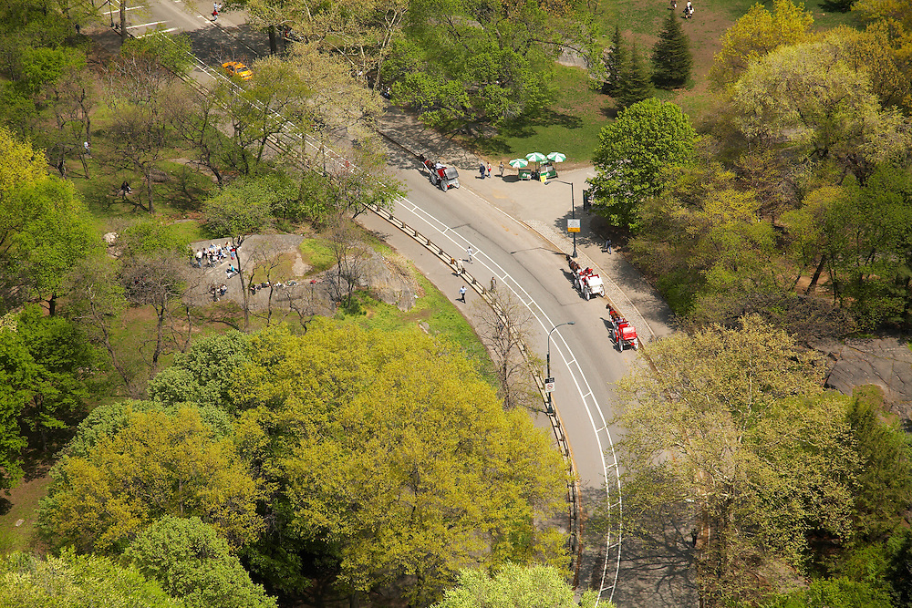View of Central Park from 160 Central Park South