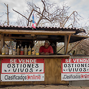 SEPTEMBER 25 - LOIZA, PUERTO RICO - <br /> Edwin Delgado Rivera, 53, stands behind the counter of his oyster shack in the coastal area of Pi&ntilde;ones in Loiza which sustained heavy damage by the destructive path of Hurricane Maria. Delgado's wood business was not damaged.<br /> (Photo by Angel Valentin for NPR)