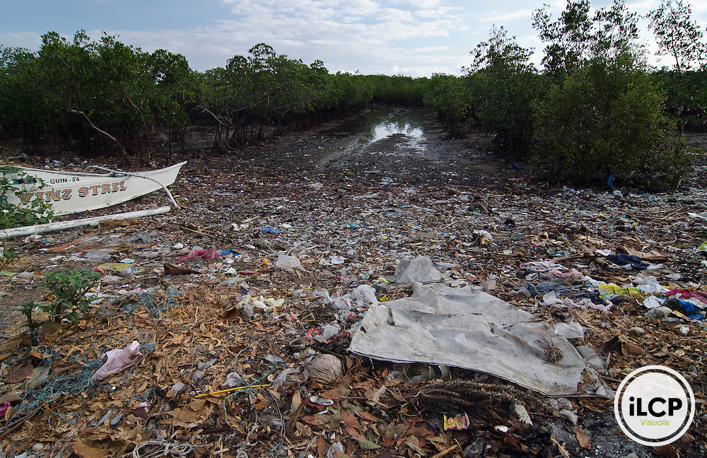 Polluted moangroves; trash and untreated sewage cover the shore; Guindacpan Island; Danajon Bank, Bohol, Philippines © Michael Ready / iLCP