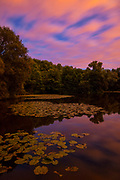 At dusk, a bank of pink clouds streak across the sky above the largest pond in Parc des Sources, Bronnenpark, Brussels, Belgium. The public park is known for its numerous springs — called sources, in French — which provide drinking water to the surrounding area. Parc des Sources is one of six major parks that are connected in an ecological corridor in Brussles. In Dutch, Parc des Sources is called Bronnenpark.