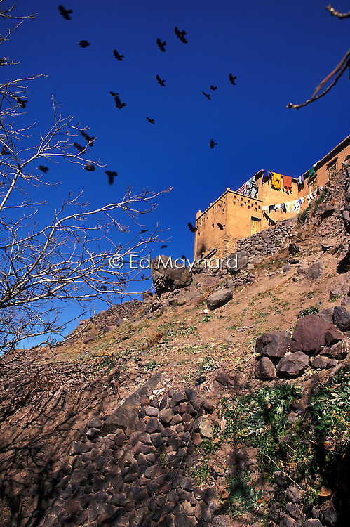 Birds fly past a mountainside home above the village of Imlil in the High Atlas, Morocco.