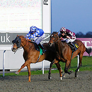 Seaside Sizzler and Jim Crowley winning the 8.00 race