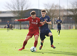 KIRKBY, ENGLAND - Saturday, January 26, 2019: Liverpool's Bobby Duncan (L) and Manchester United's Dylan Levitt during the FA Premier League match between Liverpool FC and Manchester United FC at The Academy. (Pic by David Rawcliffe/Propaganda)