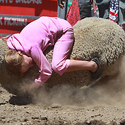 A young girl hangs on tightly to the back of a sheep during the kids sheep ride competition at the Wanaka Rodeo. Wanaka, South Island, New Zealand. 2nd January 2012