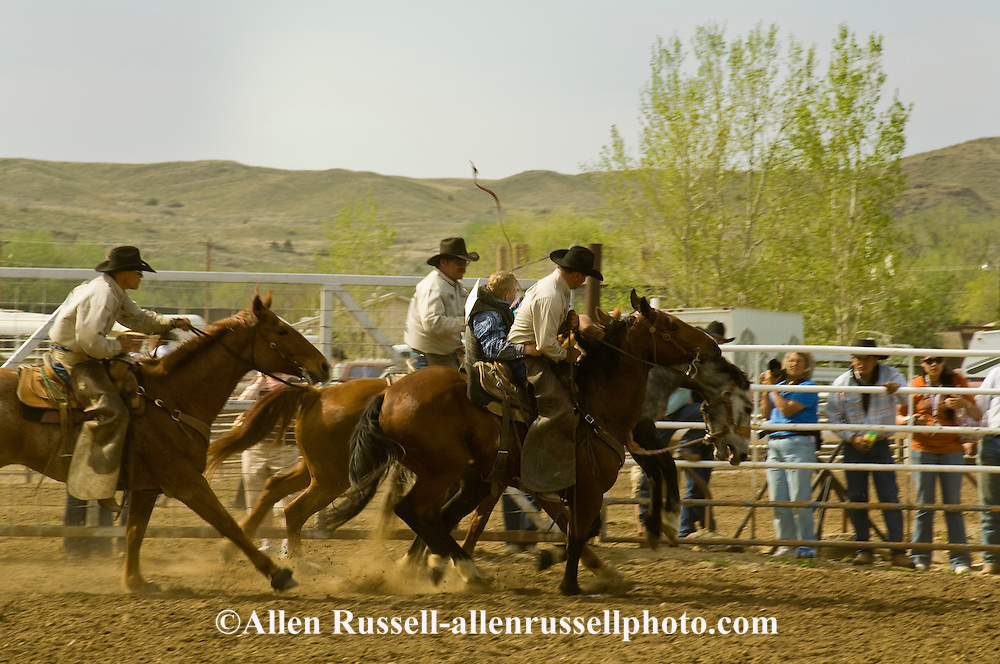 Pickup men Jay Shaw, Kyle Shaw and Lynn Ashley pick up bareback bronc rider, Miles City Bucking Horse Sale, Montana
