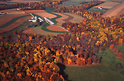 Aerial, autumn trees, Chester Co., Pennsylvania, farmland Aerial Photograph Pennsylvania