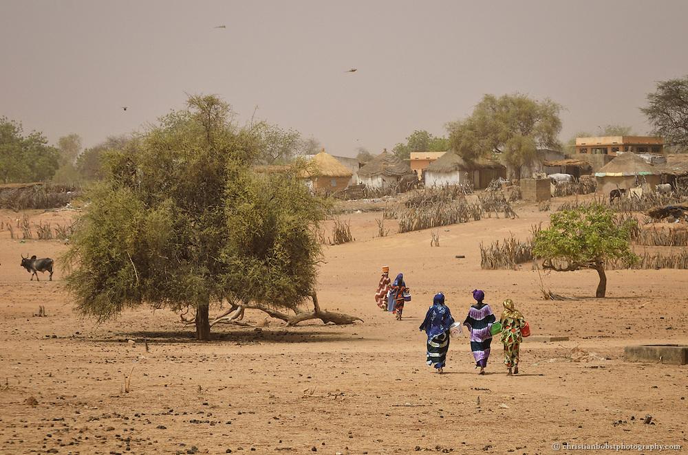Dank eines von HEKS mitfinanzierten Bohrbrunnen können Frauen im sehr heissen und trockenen YOUNOUFERE in Senegal einen Garten anlegen und  Gemüse anbauen. Das Bild zeigt Frauen auf dem Heimweg vom Garten nach Hause.