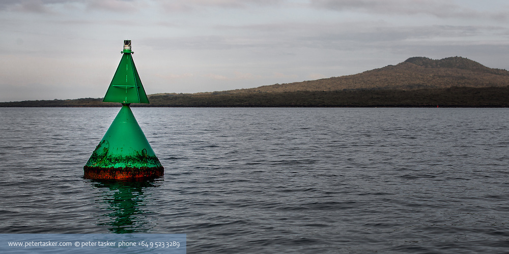 Green buoy at entrance to Auckland Harbour. Rangitoto Island in background.