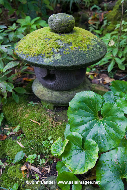 Japanese Stone Lanterns and Moss at Hokokuji Temple in Kamakaura - Ishidoro lanterns are usually used to decorate Japanese gardens, shrines and temples rather than for providing light, although occasionally they are lit up with candles inside during festivals.   Ishidoro Lanterns were introduced to Japan via China in the 6th century.  The earliest lanterns, found only in temple grounds, were designed to hold the flame representing Buddha.  Light  helps us overcome the darkness of ignorance. Ishidoro were originally used at temples, gardens and shrines.  Around the 16th century stone lanterns were adopted  and placed in the gardens of teahouses.
