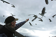 Fishing, Marlborough Sounds, South Island, New Zealand<br />
