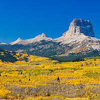 bright fall colors in glacier national park, chief mountain, montana, crown of the continent