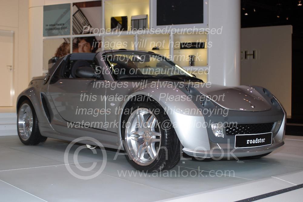 Think Roadster - Alternative Fuel Vehicle
