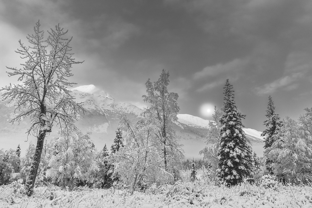 The setting moon over the Chugach Mountains and Chugach State Park in Southcentral Alaska. Winter. Morning.