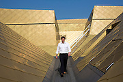 Guy Nevil, senior partner and engineer from Max Fordham on the distinctive gold coloured roof of  the Hive in Worcester, UK. The first fully integrated university and public library in the UK.