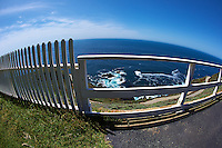 Fisheye View of the Pacific Ocean Through a Fence Along the Path to the Point Sur Lighthouse. Image taken with a Nikon D3s and 16 mm f/2.8 fisheye lens (ISO 200, 16 mm, f/8, 1/1250 sec).