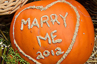 "Pumpkin carved with the words ""Marry Me"" at the Common Ground Fair, Maine."