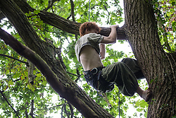 An environmental activist from HS2 Rebellion climbs a mature tree expected to be felled as part of works in Denham Country Park for the HS2 high-speed rail link on 13th July 2020 in Denham, United Kingdom. The activists are seeking to hinder or prevent progress on HS2, which is currently projected to cost around £106bn and will remain a net contributor to CO2 emissions during its projected 120-year lifetime.