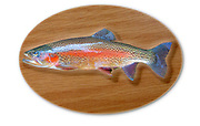 Digitally generated image of a mounted trout trophy on a wooden plaque