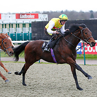 The Dandy Yank and William Carson winning the 3.40 race
