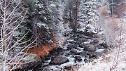 Cascading Stream, Rocks and Trees