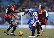 Lewis McGugan, Sheffield Wednesday midfielder battles with Rohan Ince, Brighton midfielder and Inigo Calderon, Brighton defender during the Sky Bet Championship match between Sheffield Wednesday and Brighton and Hove Albion at Hillsborough, Sheffield, England on 14 February 2015.